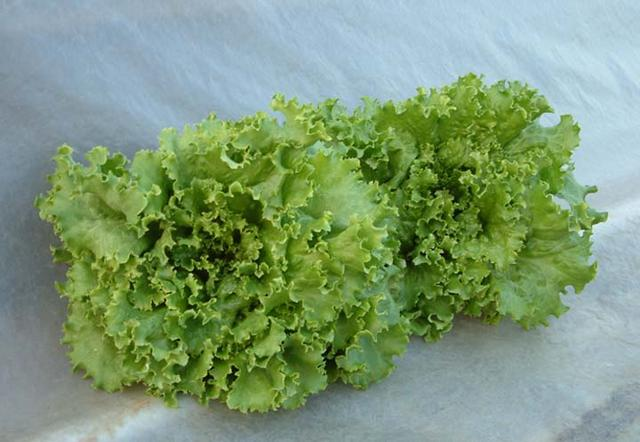 Lettuce, Two Star
